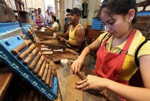 puros-cubanos